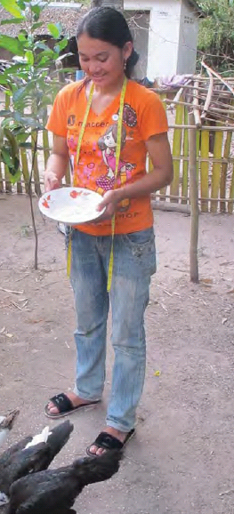 youth feeding chickens
