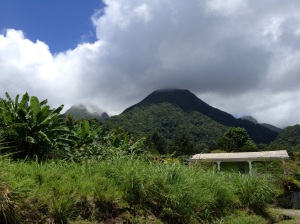 scenic view of Dominica