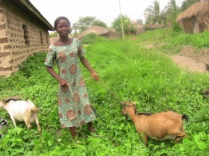 girl with goats
