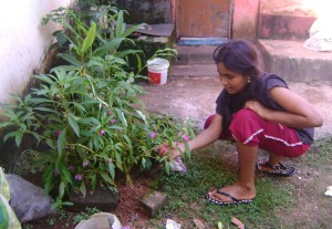 girl tending plants