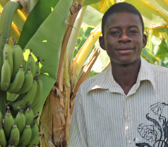 boy and banana tree