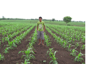 Guatemalan teen in field
