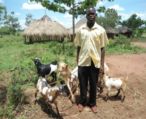 young man with goats